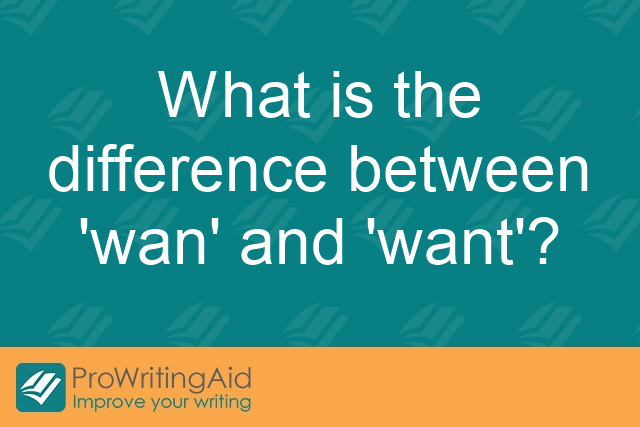 What is the difference between 'wan' and 'want'?